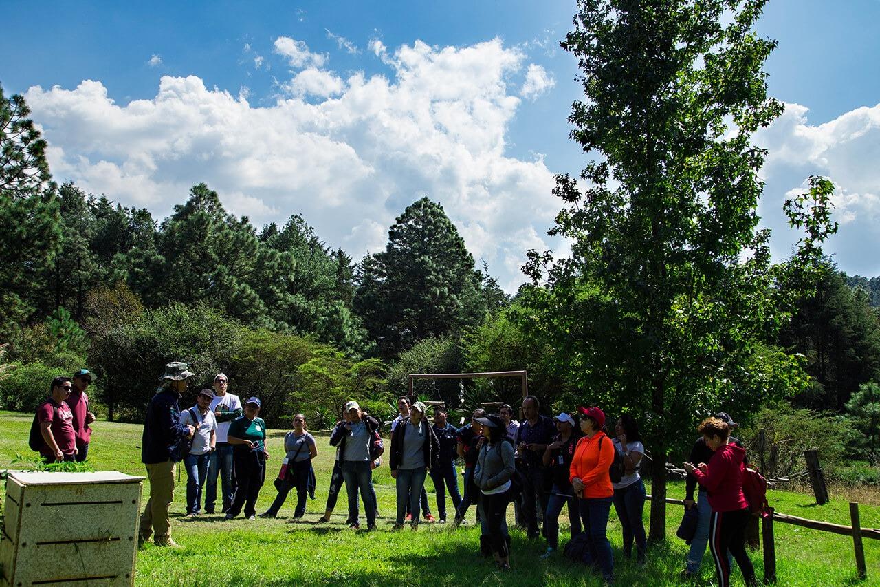 Parque-la-Planta-Image3_Composta-1