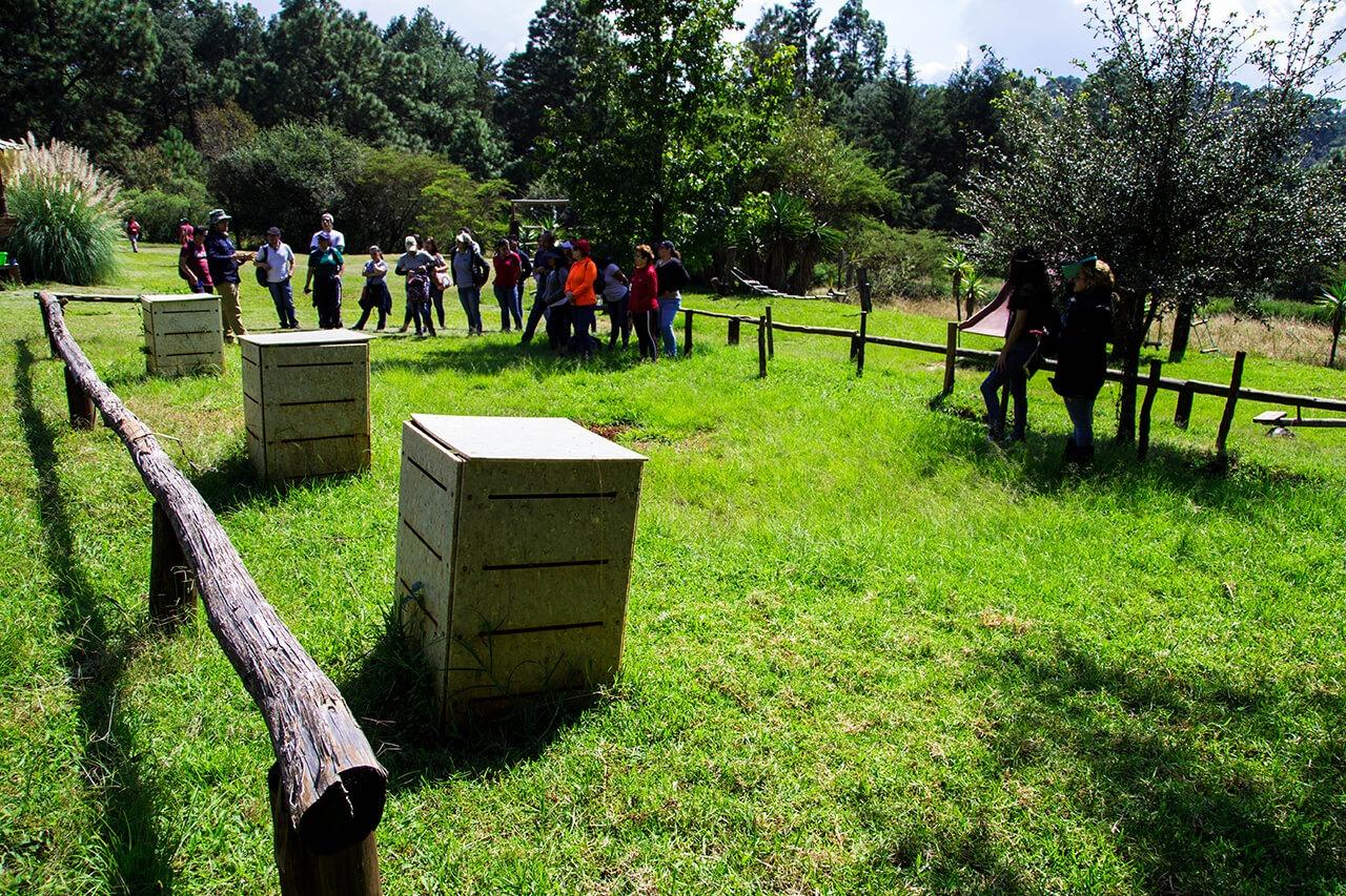 Parque-la-Planta-Image3_Composta-2