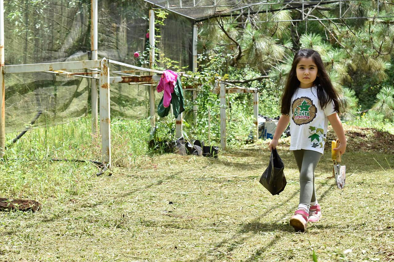 Parque-la-Planta-Image3_Invernadero-3