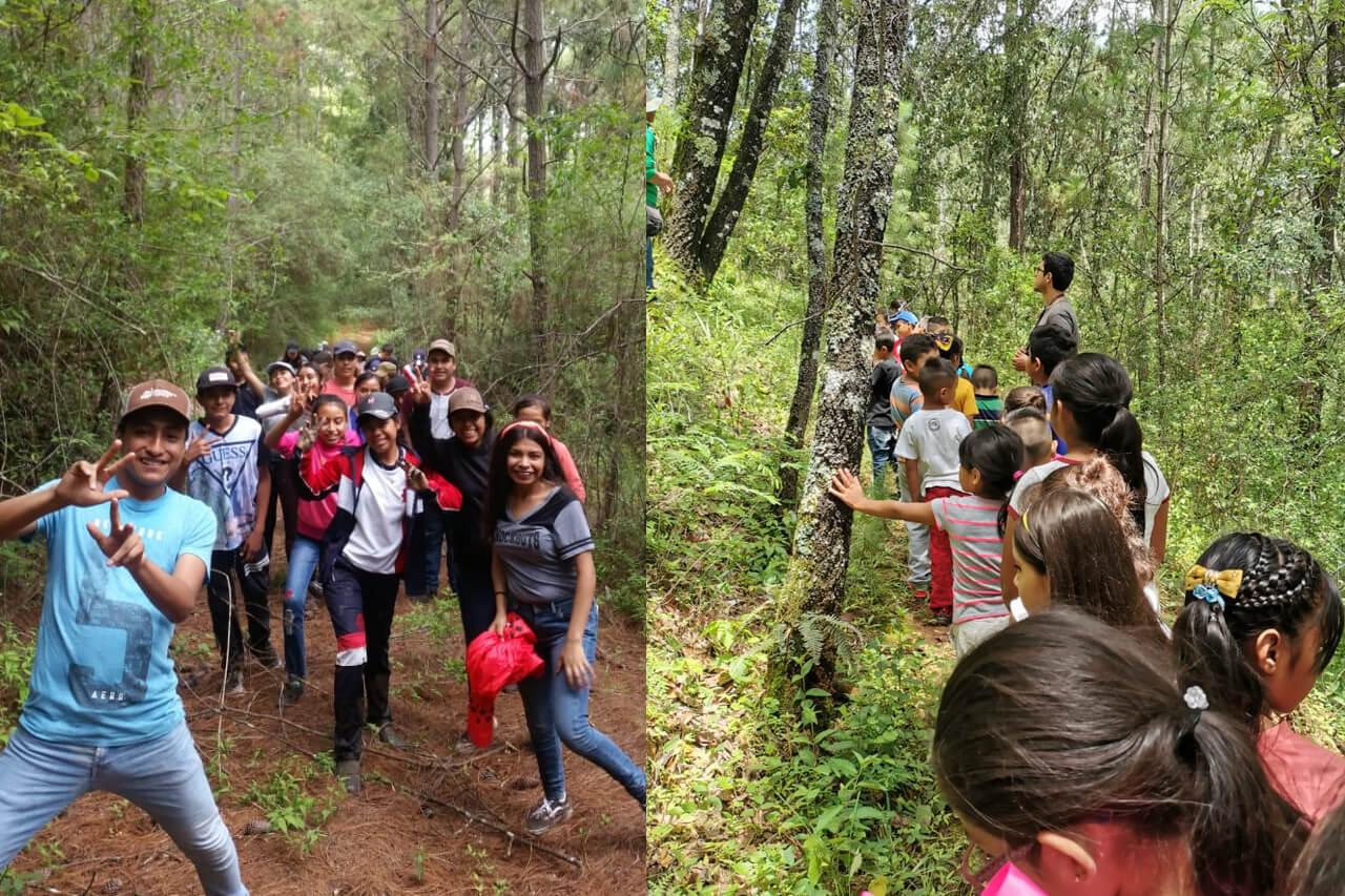 Parque-la-Planta-Image3_Sendero-5