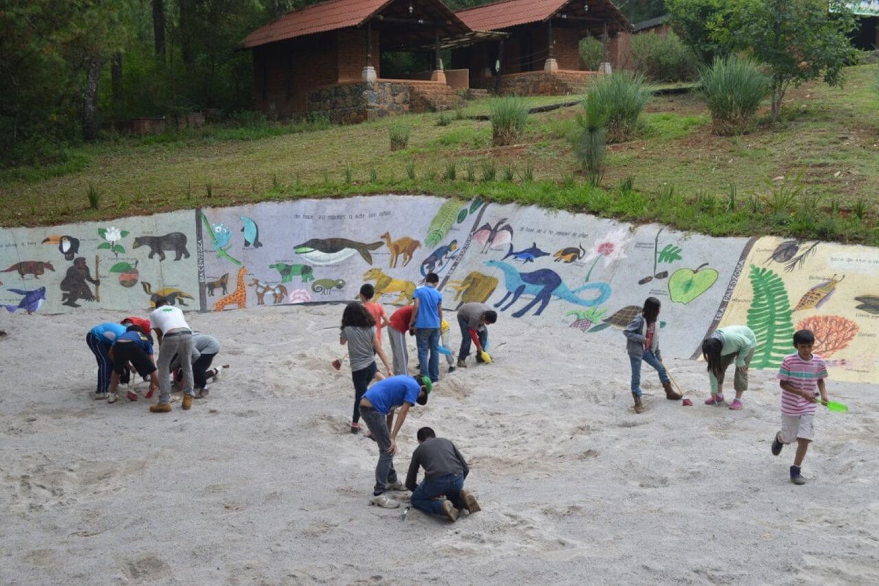 Parque-la-Planta-Image3_Tierra de Tesoros-1