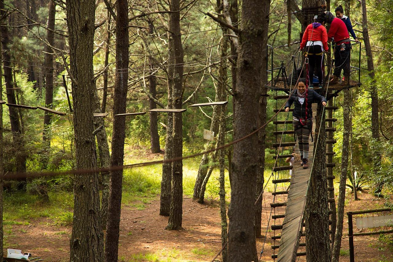 Parque-la-Planta-Image3_X-Trechos-4