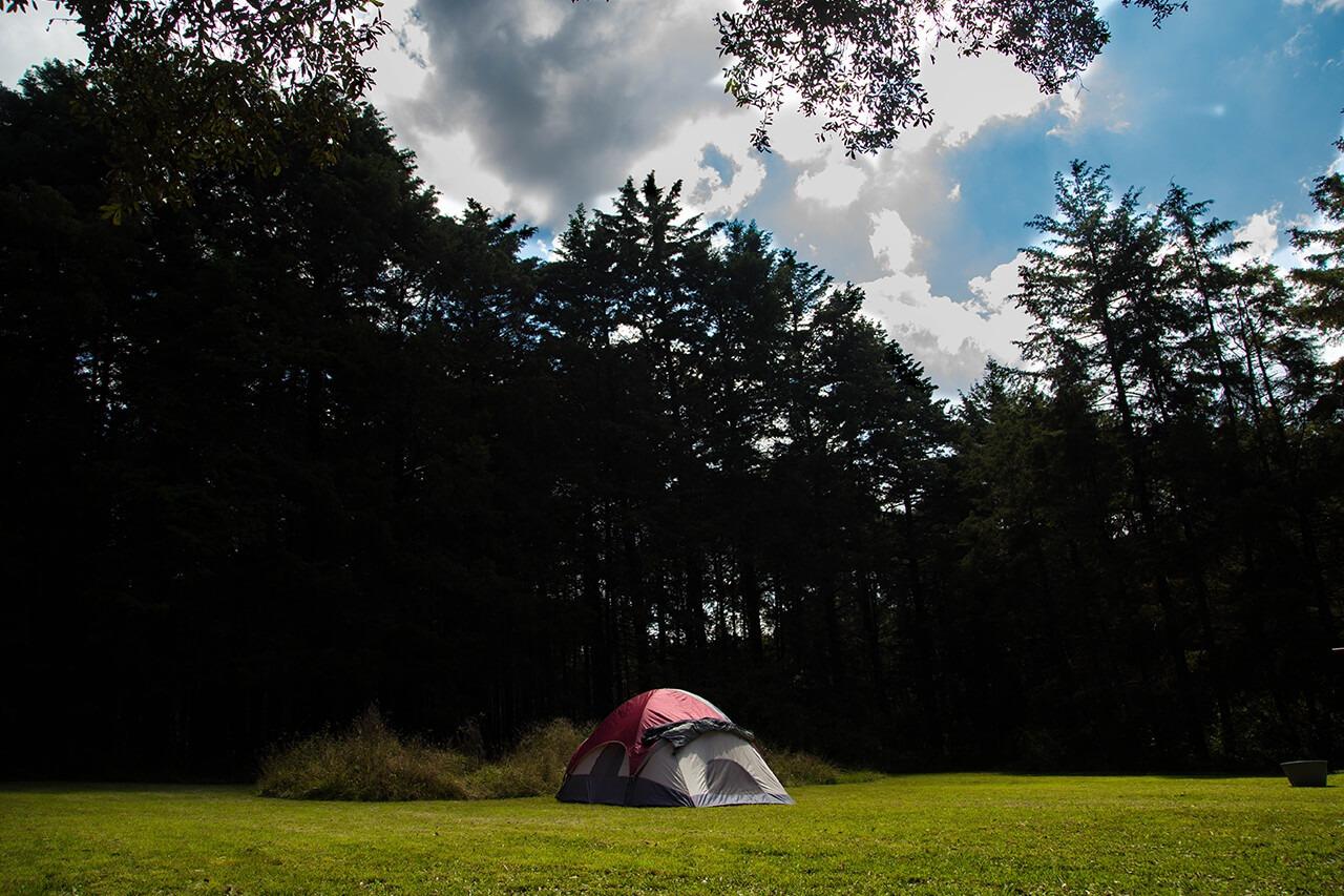 Parque-la-Planta-Image6_Zona de Camping-4