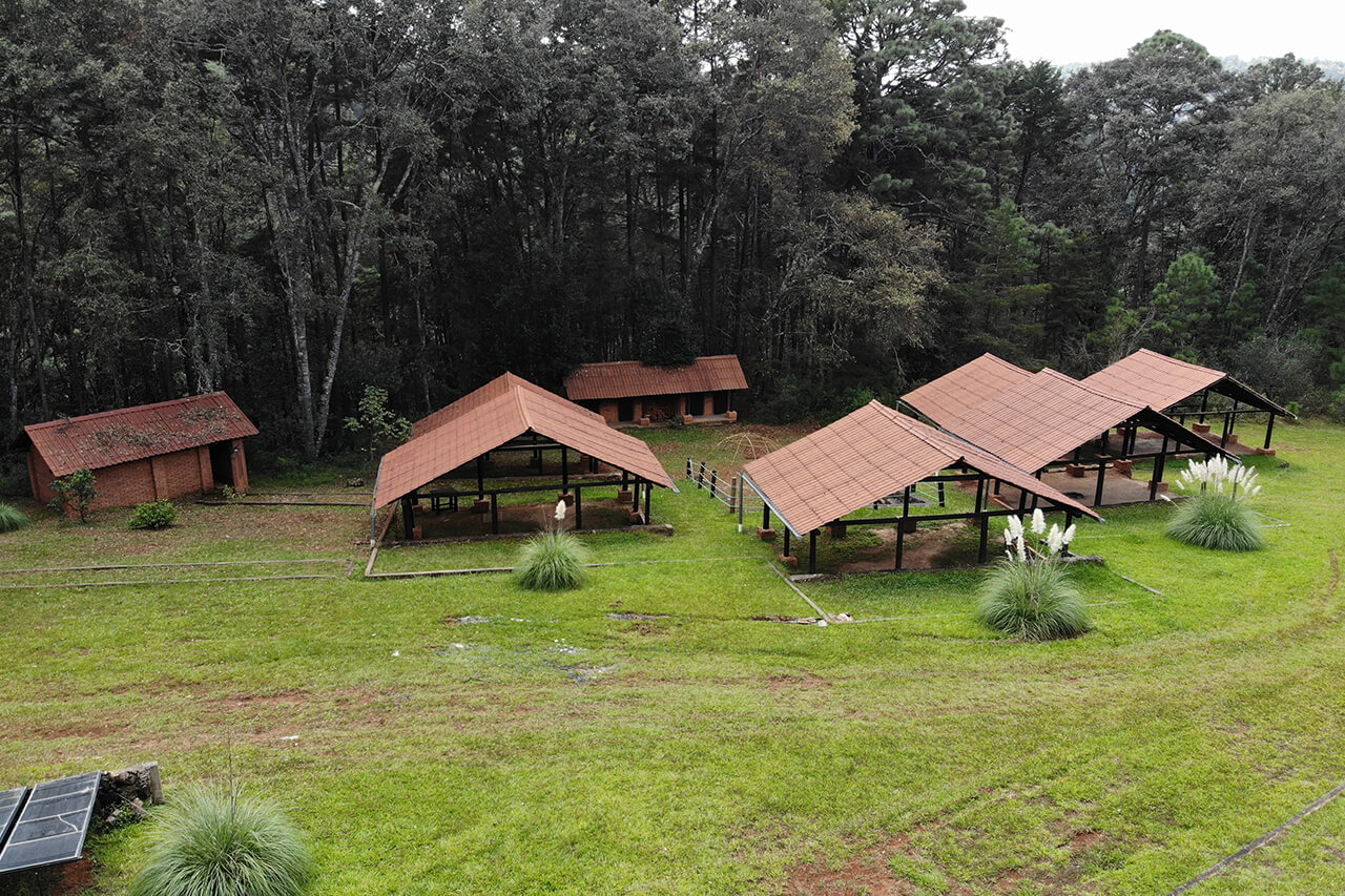 Parque-la-Planta-Image6_Zona de Camping-6